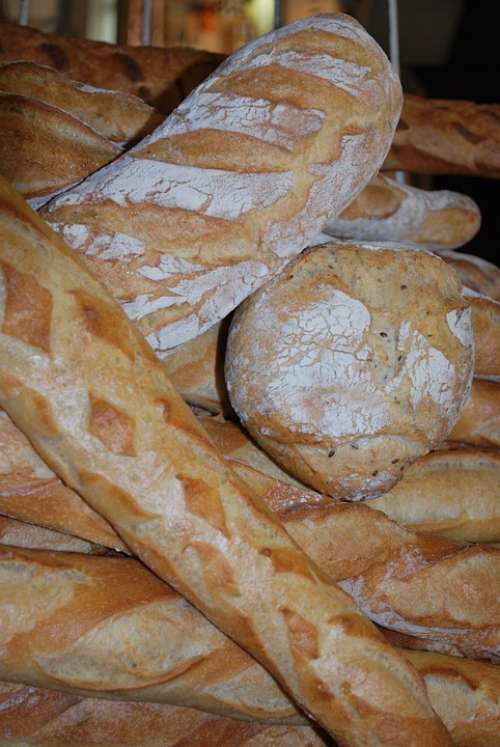 Bread Power Starchy Bakery