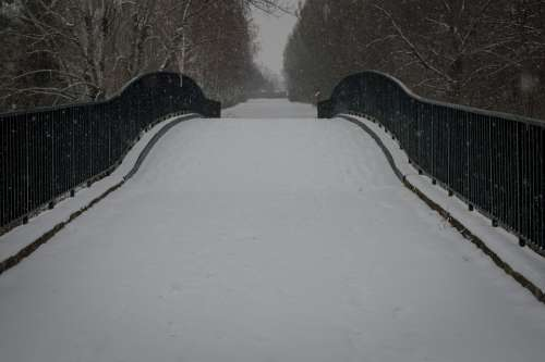 Bridge Snow Winter Nature Trees Frost Outdoors