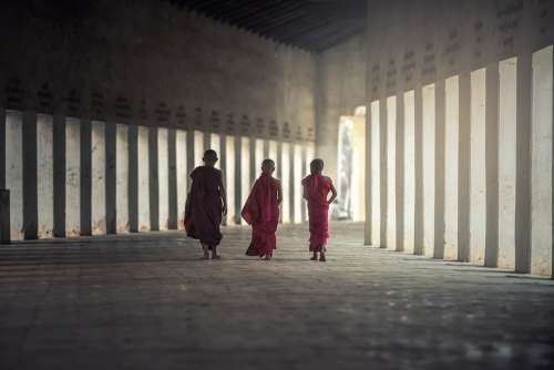 Buddhism Monks Monastery Asia Boys Buddhists