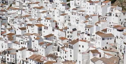 Buildings Town Cityscape Apartment Building