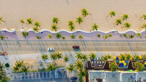 Buildings Cars Palm Trees Road Sand Top View