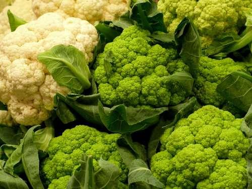 Cabbage Vegetables Sano Food Green Alimentari