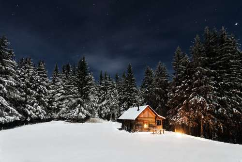 Cabin Pine Trees Starry Night Forest Cottage