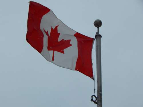 Canadian Flag Winter Snowing Canada Flag