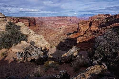 Canyon Usa Colorado Gorge Landscape Nature Rock