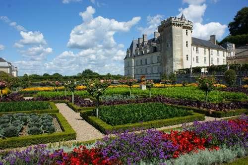 Castle Villandry Loire Garden French Flowers