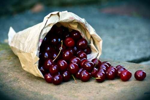 Cherries Fruit Sour Cherries Bag Harvest Red Ripe