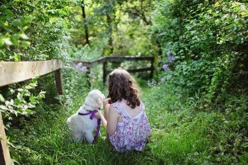 Child Dog Pet Dress Girl Golden Retriever Grass
