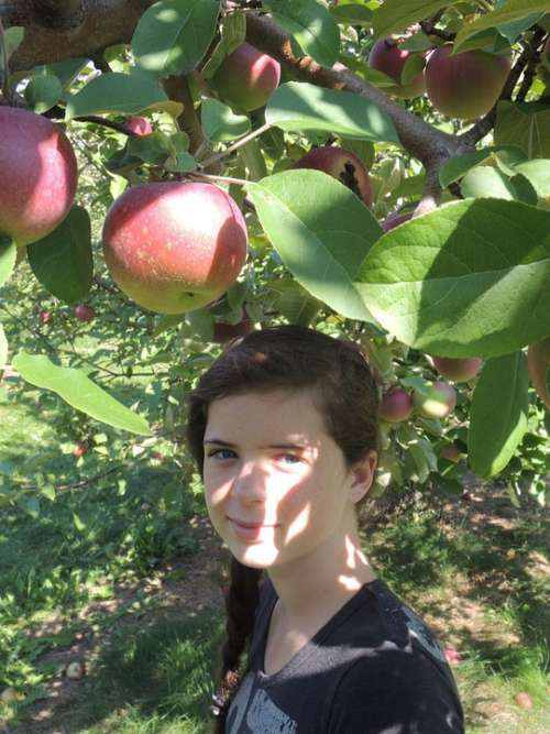 Child Apple Nature