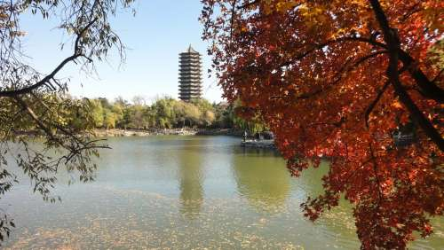 China Tourism The Scenery Autumn Red