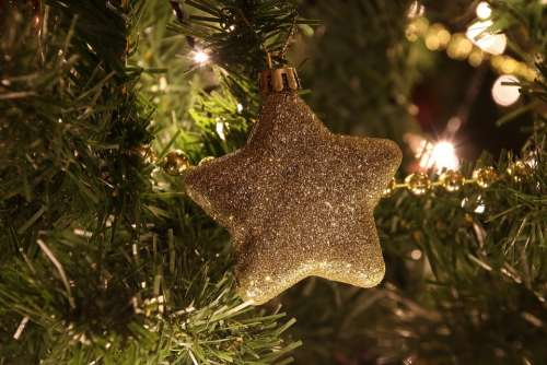 Christmas Deco Decoration Christmas Time Star Mood