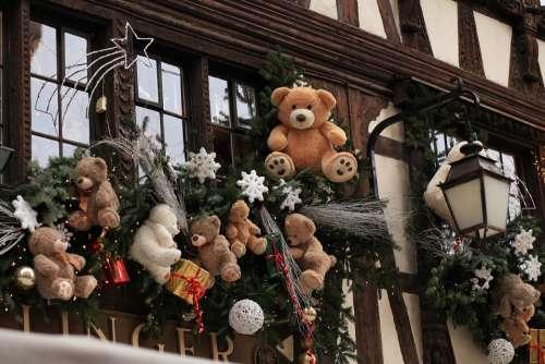 Christmas Bear Cut Decorate