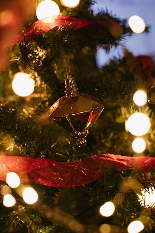 Christmas Christmas Lights Holiday Holiday Lights