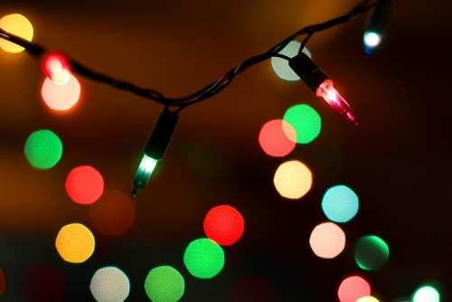 Christmas The Lights Christmas Tree Holidays Light