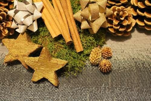 Christmas Decorations Poinsettia Christmas