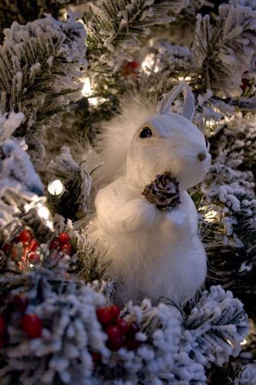 Christmas Tree Christmas Decorations Night Lighting