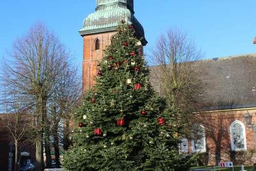 Fir Tree Christmas Christmas Tree