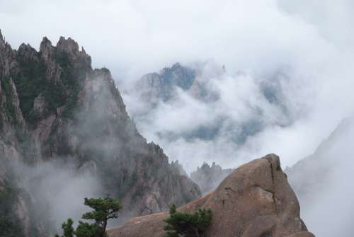 Cloud Mountain Nature Scenery Fog Forest