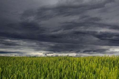 Clouds Summer Storm Clouds Form Dark Clouds