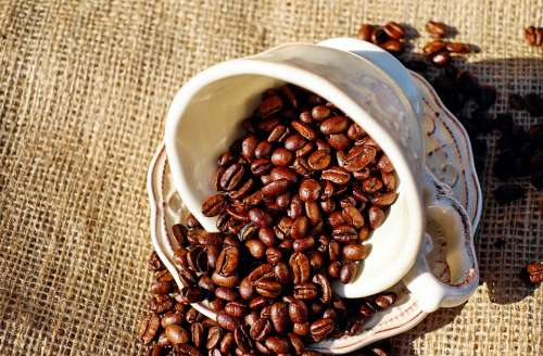 Coffee Coffee Cup Porcelain Coffee Beans