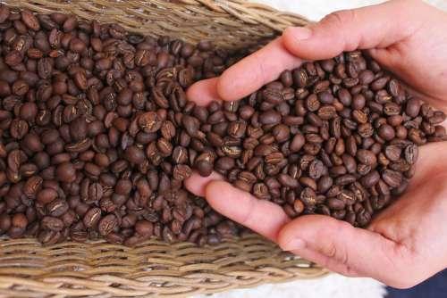 Coffee Drink Caffeine Cafe Fresh Drinks
