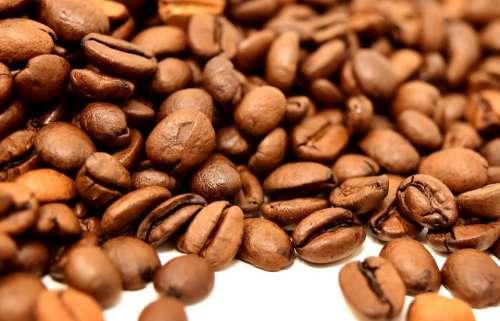 Coffee Beans Caffeine Coffee Roasted Aroma Brown