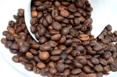 Coffee Beans Coffee The Drink Caffeine The Brew