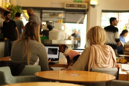 Coffee Shop Women Students Studying Laptops