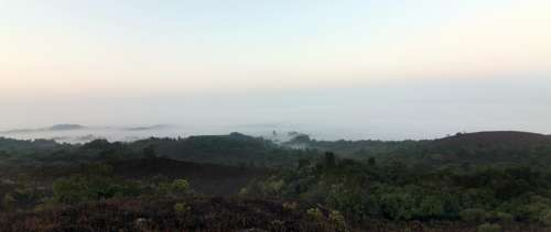 Coorg Fog Forests Greenery Hills Jungles