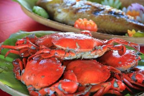 Crabs Seafood Sea Palawan Fresh Food