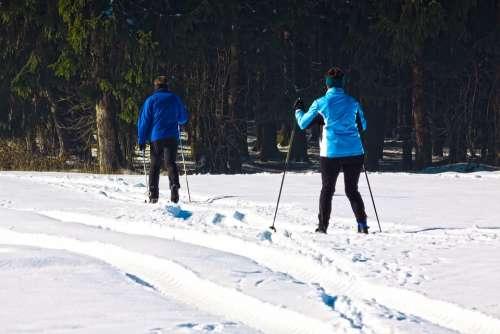 Cross Country Skiing Man Woman Fitness Endurance