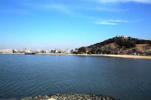 Cucumber Also Gyeonggi Do Landscape Photography