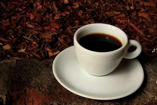 Cup Coffee Drink Caffeine Breakfast Winter Drinks
