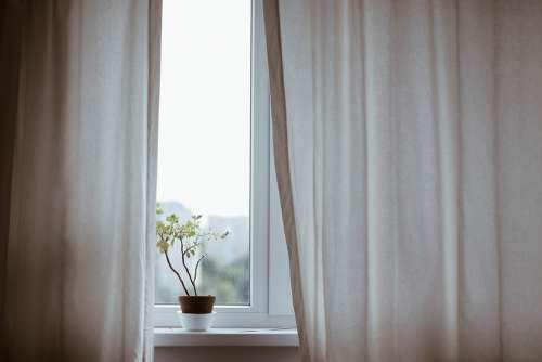 Curtains Decoration Indoors Plant Pot Plant Window