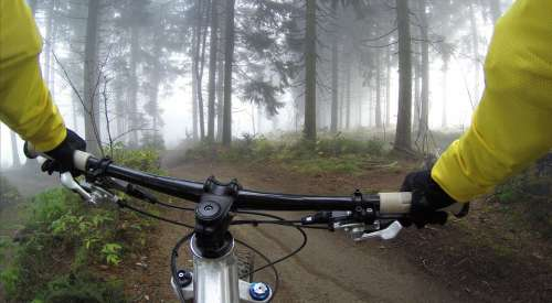 Cycling Handlebars Woods Bicycle Exercise Forest