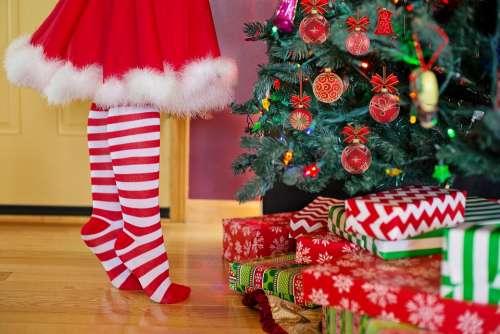 Decorating Christmas Tree Santa Woman Christmas