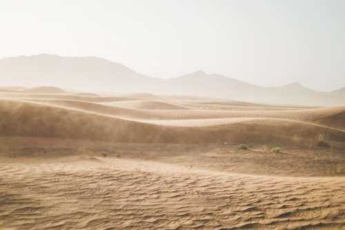 Desert Sand Sand Dunes Sahara Gobi Dry Drought