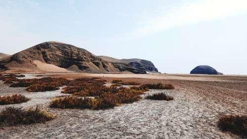 Desert Sand Nature Sea Exotic Nice Lived