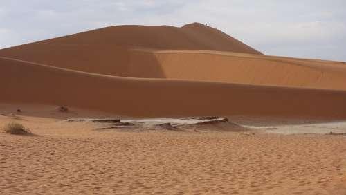 Desert Namib Sand Dunes Dry Namib Desert