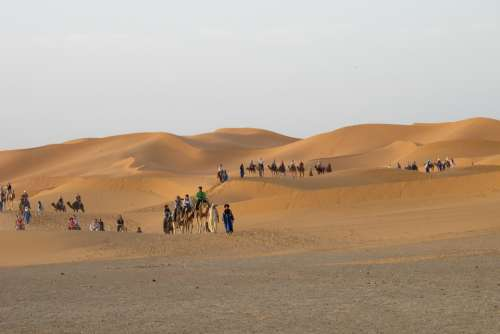 Desert Merzouga Dunes Morocco