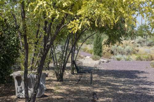 Desert Oasis Peace Walk Garden Bench Shade Gravel