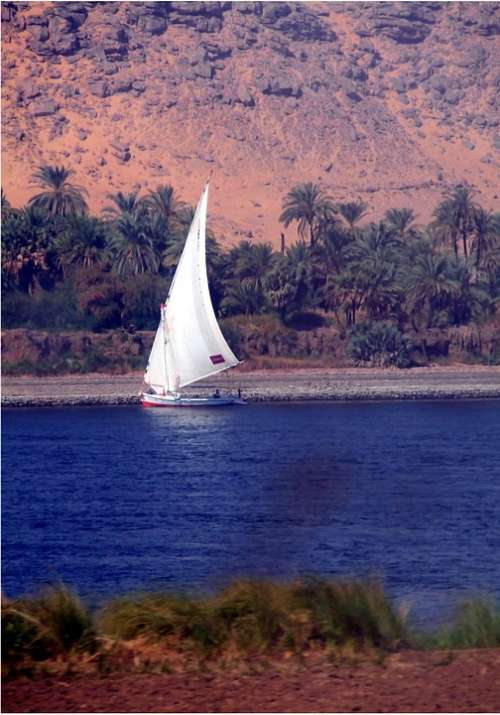 Dhow Sailing Vessel Nile River Boat Traditional