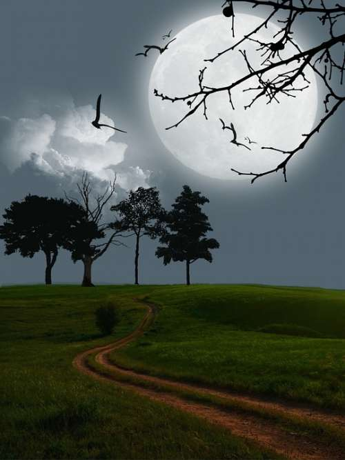 Digital Art Artwork Moon Mystery Landscape Scene