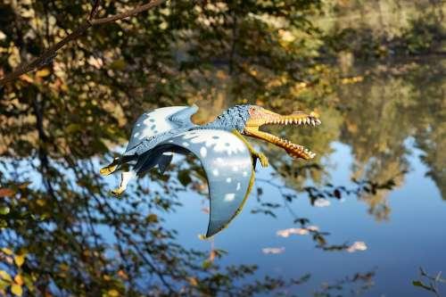 Dinosaur Flying Pterosaur