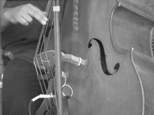 Double Bass Music Jazz