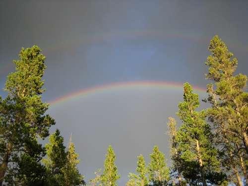 Double Rainbow Rainbow Trees Inspirational Colorado