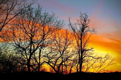 Dusk Sunset Mountains Trees At Sunset Winter Sunset
