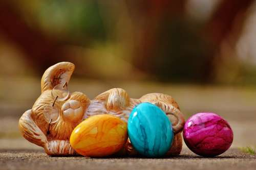 Easter Egg Colorful Hare Happy Easter