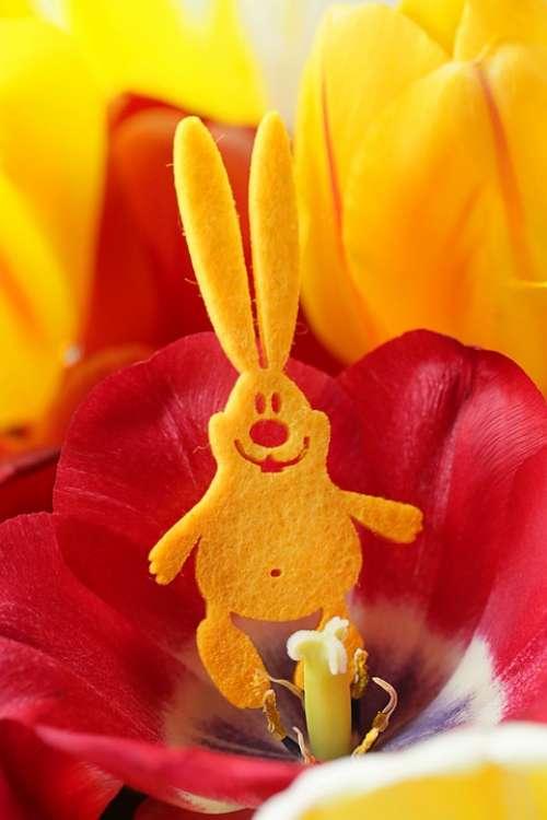 Easter Rabbit Hare Spring Tulip Yellow Red Felt