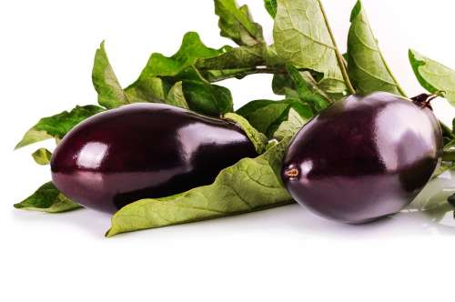 Eggplant Vegetables Vegetarian Lilac Fresh Food